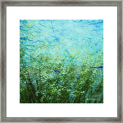 Seagrass Framed Print