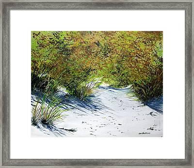Seagrass Framed Print by Ken Ahlering