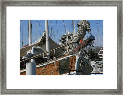 Seagull And Boat Framed Print