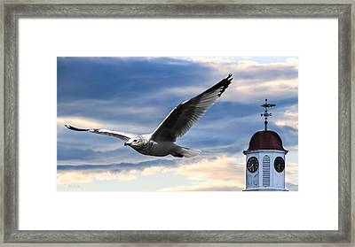 Seagull And Clock Tower Framed Print by Bob Orsillo