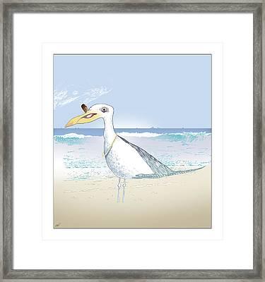 Seagull Cigar Framed Print by Ch' Brown