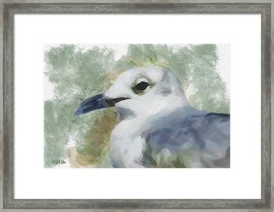 Framed Print featuring the painting Seagull Closeup by Greg Collins