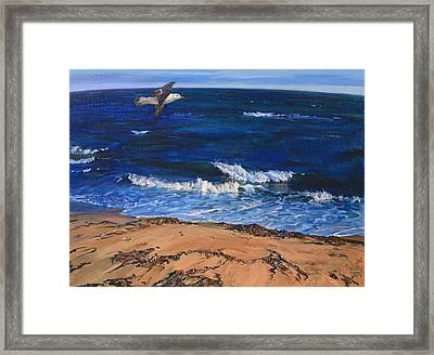Seagull Flying Along The Surf Framed Print