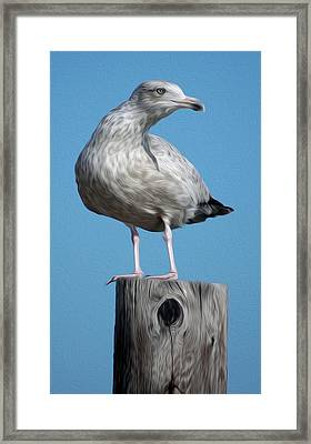 Framed Print featuring the digital art Seagull by Kelvin Booker