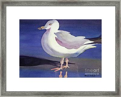 Framed Print featuring the painting Seagull by Shirin Shahram Badie