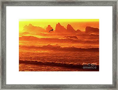 Framed Print featuring the photograph Seagull Soaring Over The Surf At Sunset Oregon Coast by Dave Welling