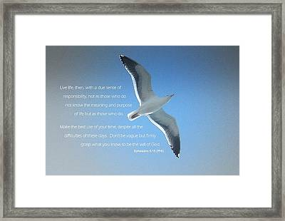 Seagull Soaring W/ Scripture Framed Print