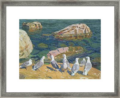 Seagulls Framed Print by Arkadij Aleksandrovic Rylov