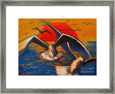 Seagulls At Sunset Framed Print