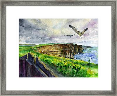 Seagulls At The Cliffs Of Moher Framed Print