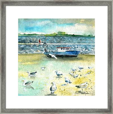 Seagulls In Ireland Framed Print by Miki De Goodaboom