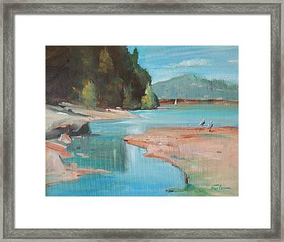 Seagulls In The Shallows Framed Print by Ron Wilson