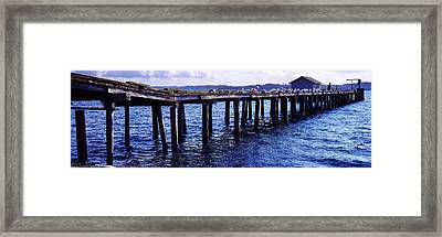 Seagulls On A Pier, Whidbey Island Framed Print by Panoramic Images
