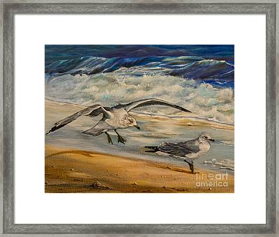 Seagulls On The Beach Framed Print by Zina Stromberg