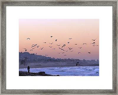 Seagulls Sunrise Framed Print