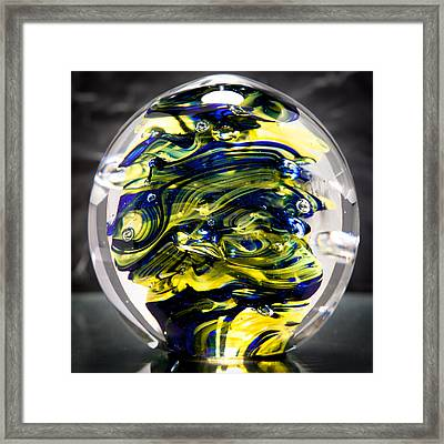 Seahawks Glass -  Solid Glass Sculpture  Framed Print by David Patterson