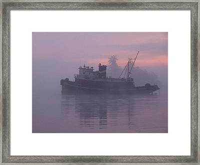 Seahorse On A Misty Morning Framed Print