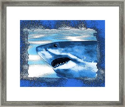 Seahunt Framed Print by Christopher Korte