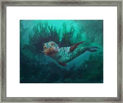 Seal Framed Print by Kathleen Kelly Thompson