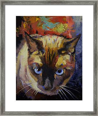 Seal Point Siamese Framed Print by Michael Creese