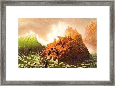 Seal Rocks--farallon Islands Framed Print by Albert Bierstadt