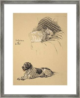 Sealyham And Setter, 1930 Framed Print