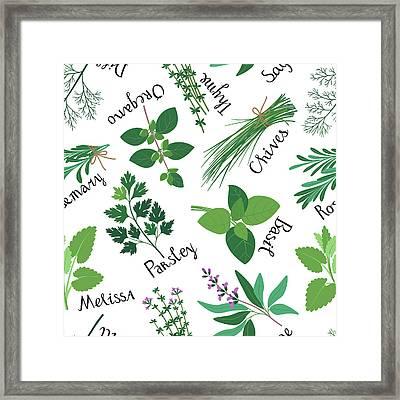 Seamless Pattern Fresh Herbs Framed Print by Innabodrova