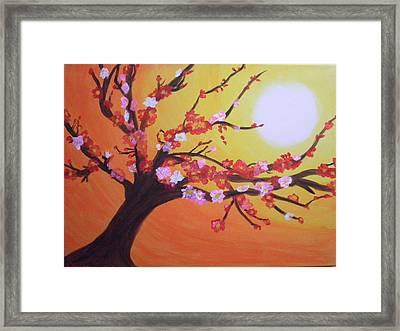 Sean's Apple Bloosom Tree Framed Print by Tami Farina