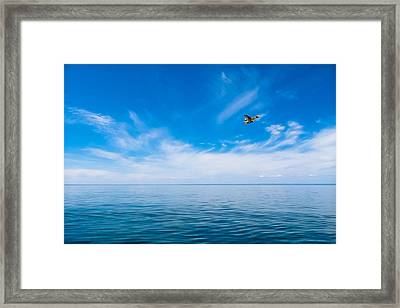 Framed Print featuring the photograph Seaplane Over Lake Superior   by Lars Lentz