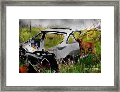 Search And Rescue Framed Print by Liane Wright
