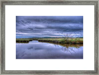Searching Framed Print by David Mcchesney