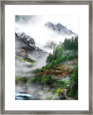 Searching For A Steller's Jay Near Aspen Colorado. Framed Print by Ric Soulen