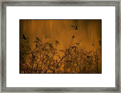 Searching For Spring Framed Print by Diane Schuster