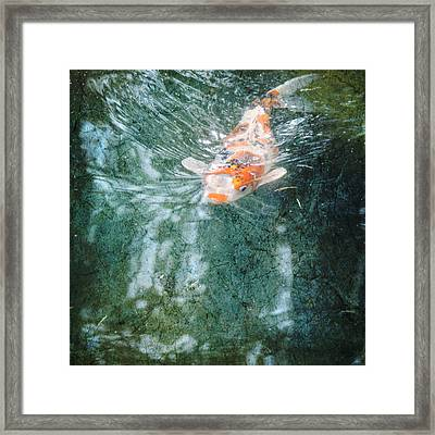 Framed Print featuring the photograph Searching by Sally Banfill