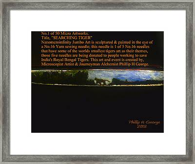 Searching Tiger Framed Print by Phillip H George