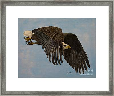 Searching Framed Print by Zina Stromberg