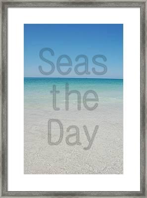 Seas The Day Framed Print