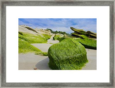 Seascape Framed Print by Aged Pixel