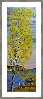 Seascape From Baltic Sea Framed Print