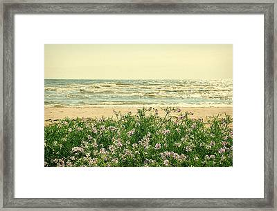 Seascape Framed Print by Gynt