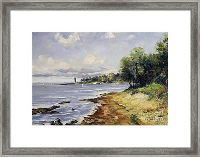 Seascape Framed Print by Petrica Sincu