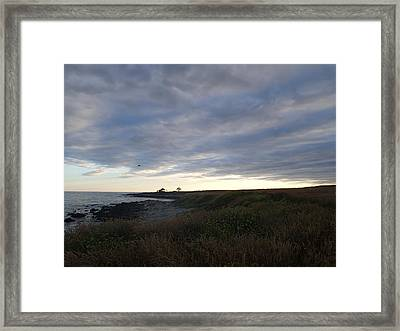 Seascape Framed Print by Robert Nickologianis
