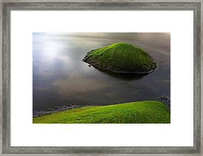 Seascape Seaweed On Rocks Framed Print by Dirk Ercken