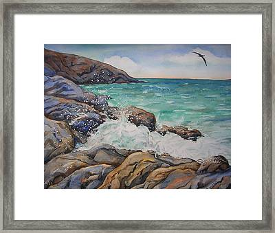 Seascape With Albatross Framed Print by Donna Greenstein