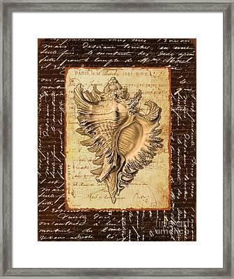 Seashell In Sepia I Framed Print by Marilu Windvand