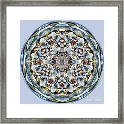 Seashell Orb Framed Print