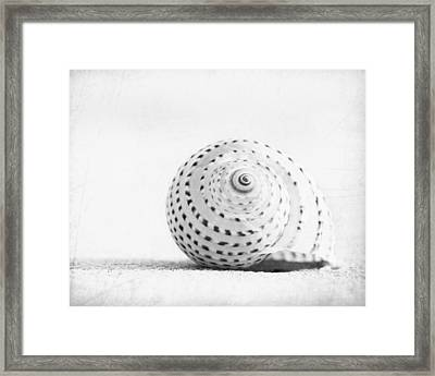 Seashell Voices Framed Print by Carolyn Cochrane