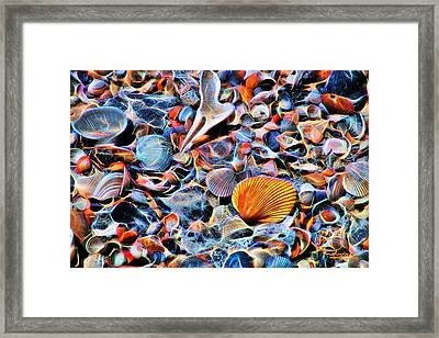 Seashells At The Seashore Framed Print by Ludwig Keck