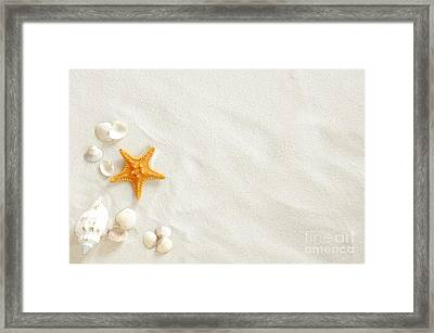 Seashells Framed Print by Boon Mee