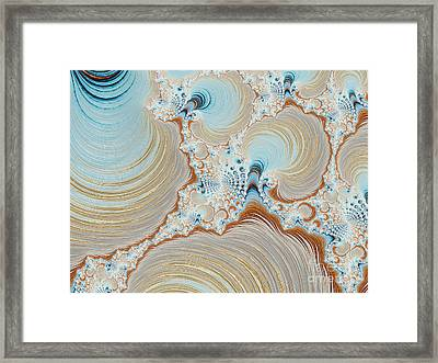 Seashells Framed Print